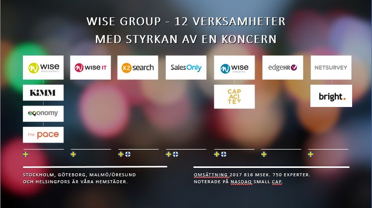 wise-group-resultat-2017